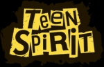 Компания TeenSpirit